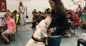 Blue, service dog, visits Lincoln School