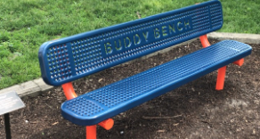 Sanborn's New Buddy Bench